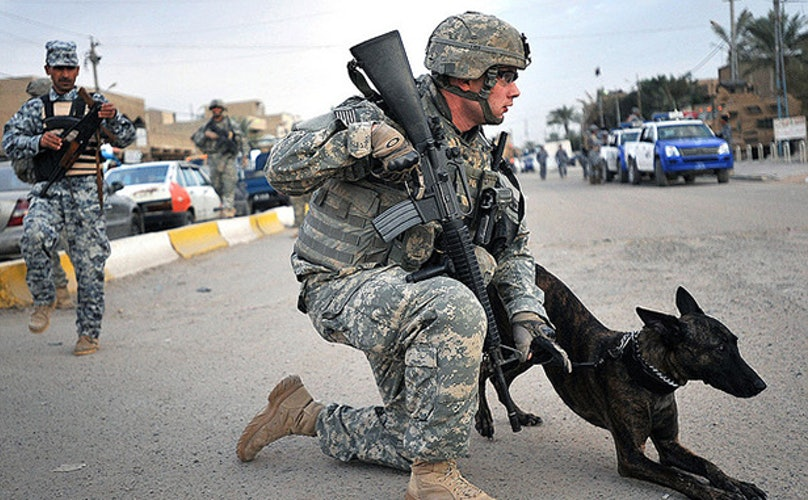 How The U.S. Government Is Failing Our Canine Veterans