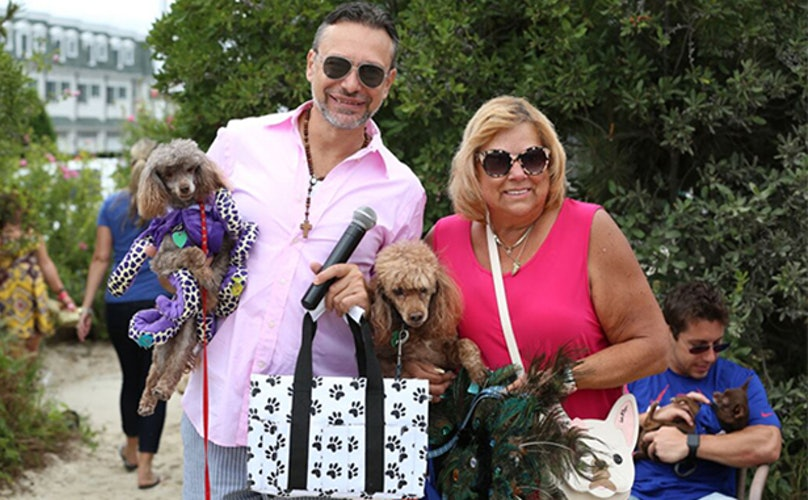 11 Real-Talk Confessions Of A Dog Pageant Judge