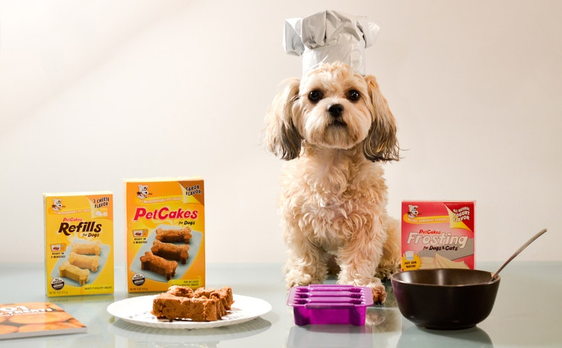 Frida Blogs Food: Microwaveable PetCakes