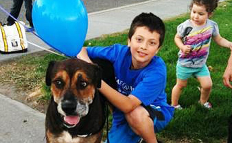 This Boy and His Dog Had Been Separated For 5 Years. Then Make-A-Wish Stepped In.