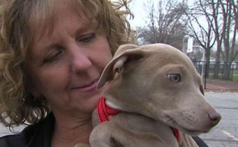 Mail Carrier Saves Puppies From Fire, Unexpectedly Finds Furever Pup