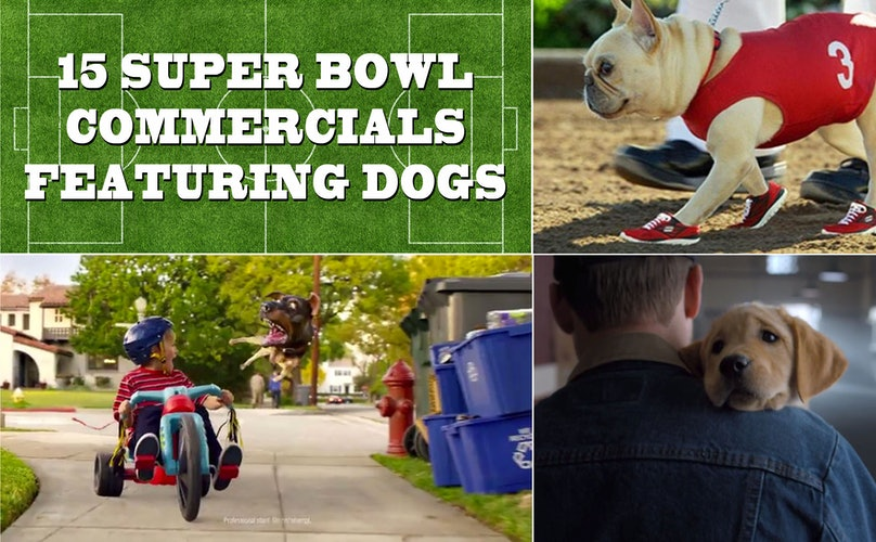 The 15 Best Super Bowl Ads of All Time, Cuz Puppies!