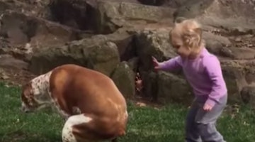 Little Girl Is Pup's Biggest Cheerleader When It Comes To Taking A Poop