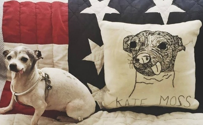 11 Custom-Made Pup Pillows That'll Make You Want One Of Your Own