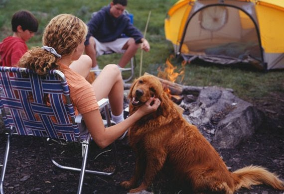 Related: 5 Important Things To Keep In Mind When You Go Camping With Your Pup