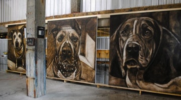 5,500 Paintings Of Shelter Dogs Represent The Dogs We Lose Each Day
