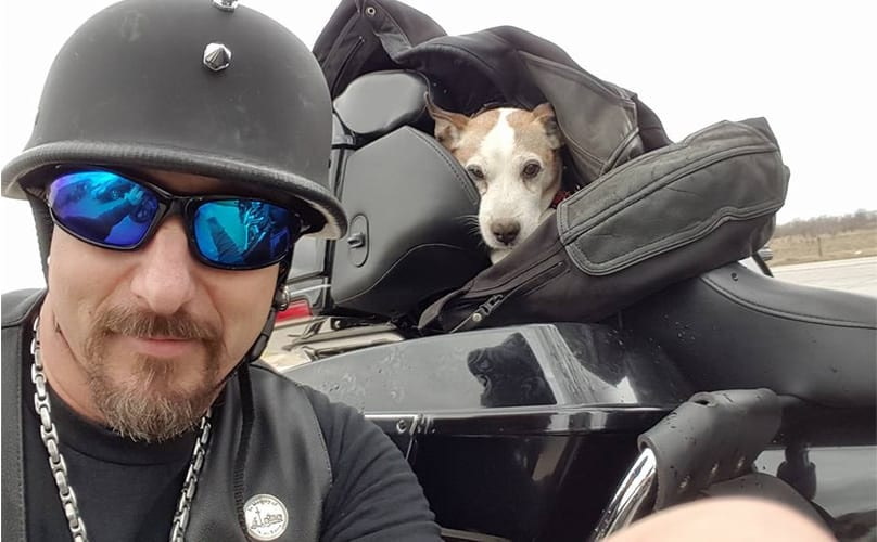 Badass Biker Saves Dog From Abusive Owner While Out Riding His Hog
