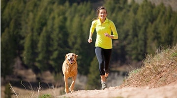 15 Dog Breeds That Will Happily Go On A Run With You