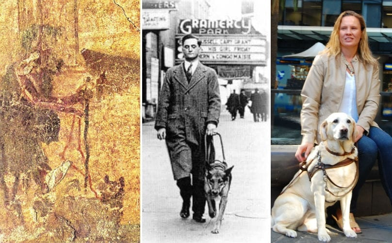 Guide Dogs Have Been Leading The Way Since The Days Of Ancient Rome