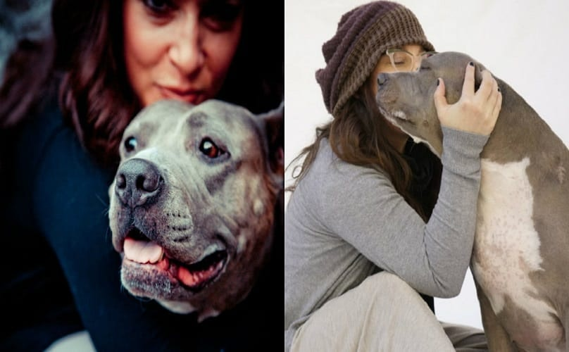 Famous Rescuer Pens Tearful Goodbye To Her Beloved Pit Bull Who Inspired The World