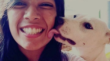 This Is What Really Happens When Your Dog Licks Your Face