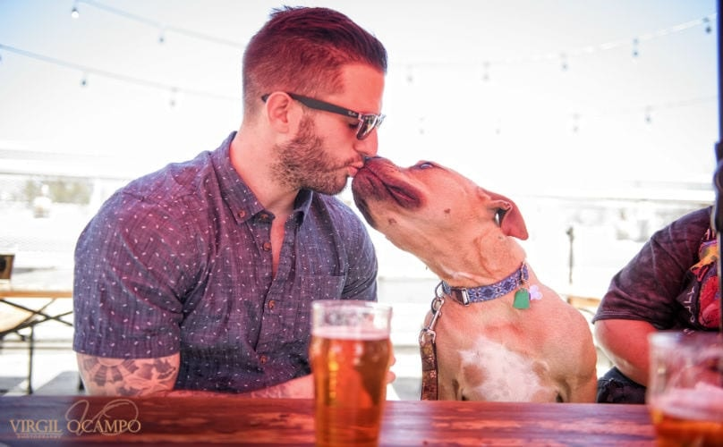 "Related: ""Softie"" Veteran Opens Up About How Adopting A Pit Bull Changed His Life"