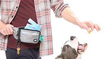 "15 Thoughtful Gifts To Say ""Thank You"" To Your Favorite Dog Walker Or Doggie Daycare Staff"