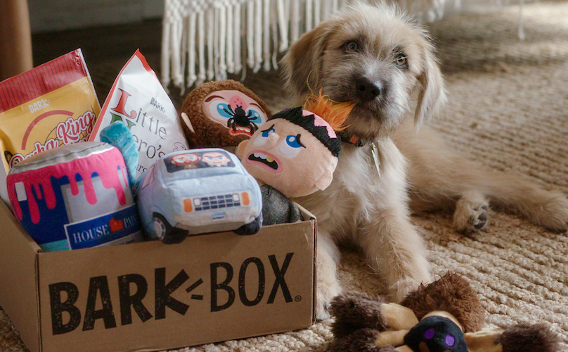 """Get These """"Home Alone"""" Dog Toys & Treats For A Limited Time, Ya Filthy Animals"""